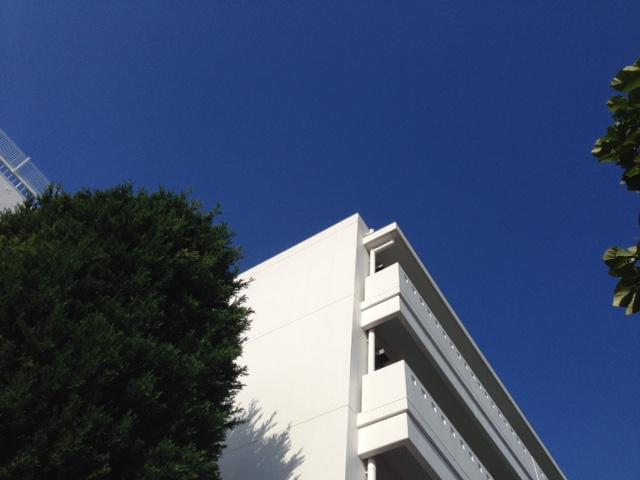 青空に映える白の校舎