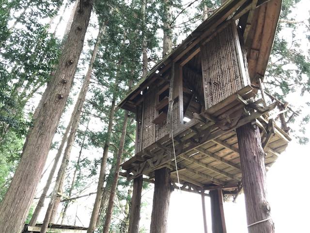 近くの森に作られたツリーハウス20190330